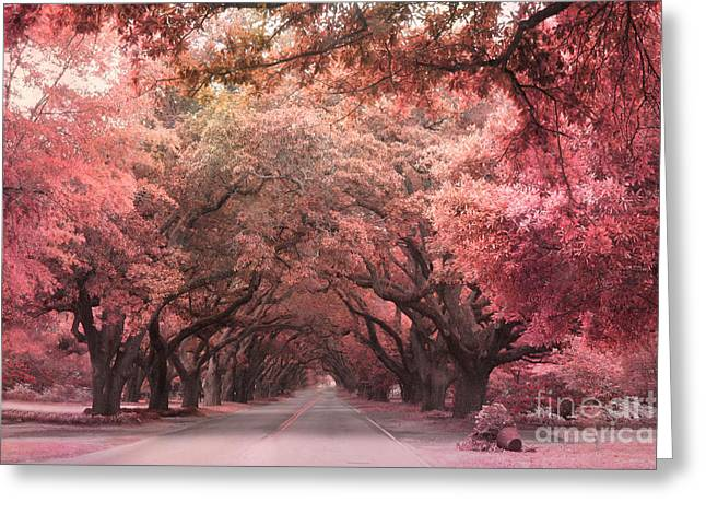 Fantasy Tree Photographs Greeting Cards - South Carolina Angel Oak Trees Nature Landscape Greeting Card by Kathy Fornal
