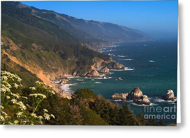 Big Sur Greeting Cards - South Coast View in Big Sur Greeting Card by Charlene Mitchell