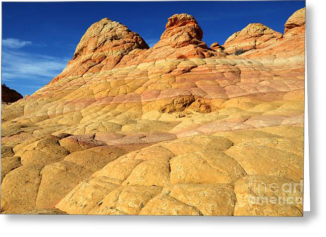 South Coyote Buttes 4 Greeting Card by Bob Christopher