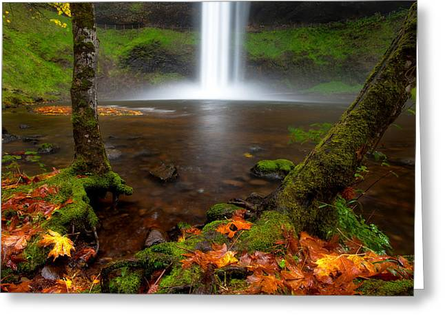 State Parks In Oregon Greeting Cards - South falls at Silver falls state park Greeting Card by Engin Tokaj