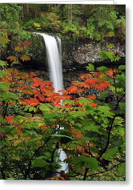 South Falls In Autumn, Silver Falls Greeting Card by Michel Hersen
