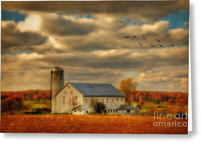 White Barns Greeting Cards - South For The Winter Greeting Card by Lois Bryan