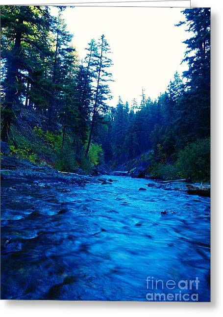 Water Flowing Greeting Cards - South Fork Of The Tieton  Greeting Card by Jeff  Swan