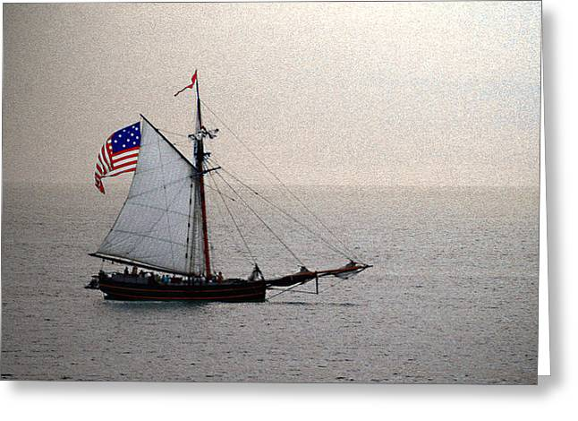 Pirate Haven Greeting Cards - South Haven Sailing Greeting Card by Penny Hunt