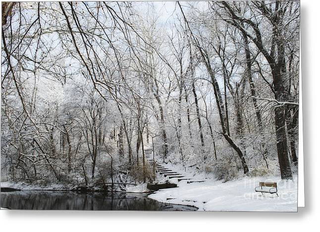 Ice-skating Greeting Cards - South Park Hiking Trail Greeting Card by Luther   Fine Art