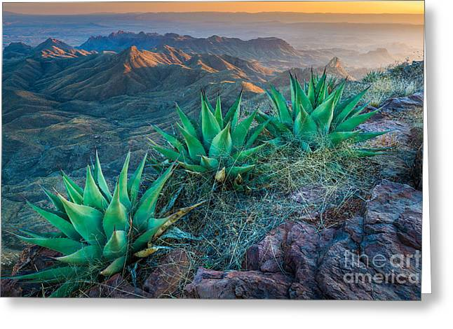 South Rim Greeting Cards - South Rim Sunset Greeting Card by Inge Johnsson