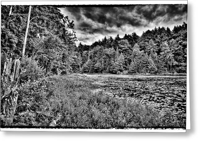 Old And New Greeting Cards - South Shore of Cary Lake Greeting Card by David Patterson
