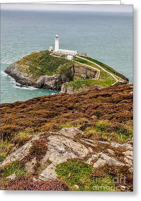 Lighthouse Digital Greeting Cards - South Stack Lighthouse Greeting Card by Adrian Evans