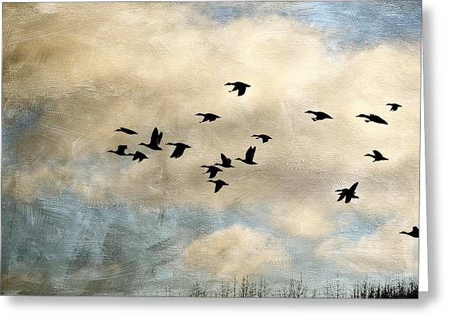 Flock Of Geese Greeting Cards - Southbound Lane Greeting Card by Bonnie Bruno