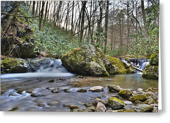 Franklin Tennessee Greeting Cards - Southern Appalachian River Greeting Card by Ryan Phillips