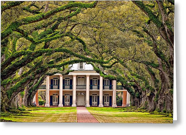 Oak Alley Plantation Greeting Cards - Southern Class Greeting Card by Steve Harrington