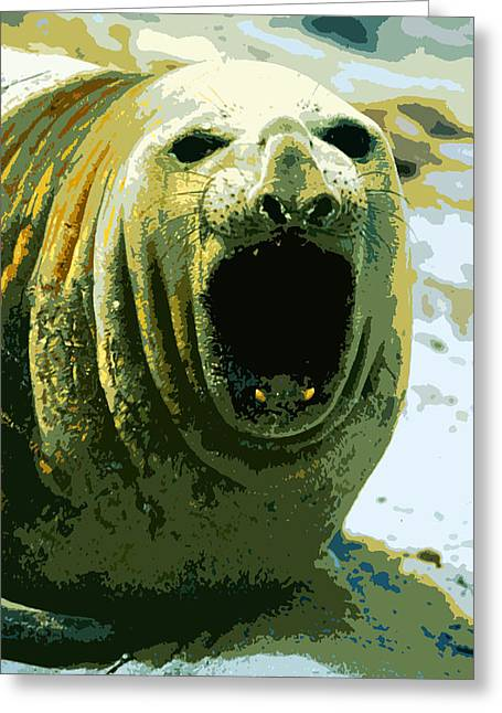 Elephant Seals Mixed Media Greeting Cards - Southern Elephant Seal Greeting Card by Anthony Dalton