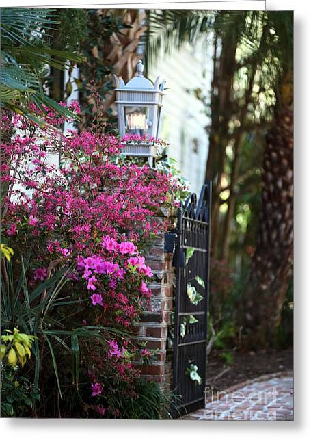 Flower Works Greeting Cards - Southern Entry Greeting Card by John Rizzuto