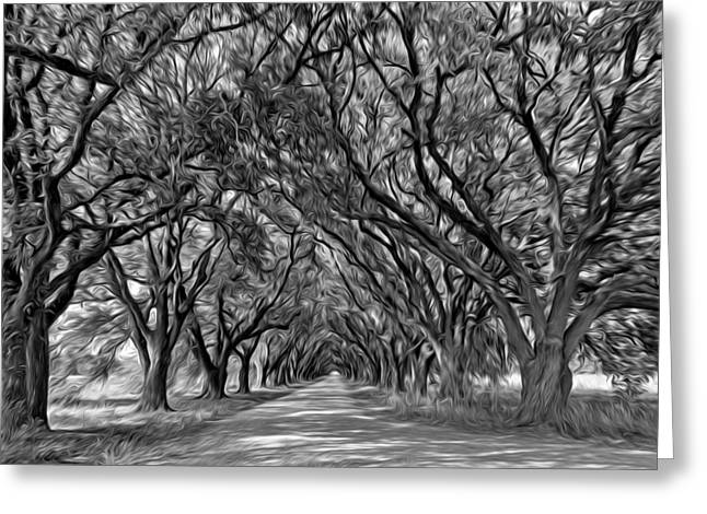 Overhang Digital Art Greeting Cards - Southern Journey - Oil bw Greeting Card by Steve Harrington