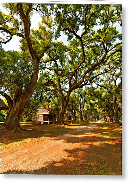 Slavery Greeting Cards - Southern Lane paint filter Greeting Card by Steve Harrington