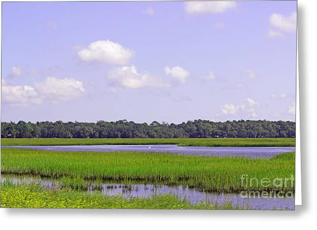 Tidal Creek Scene Greeting Cards - Southern Marsh Greeting Card by Diana  Tyson