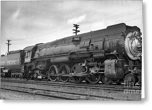 Southern Class Greeting Cards - Southern Pacific SP 4303 Mountain Class Steam Locomotive Greeting Card by Wernher Krutein