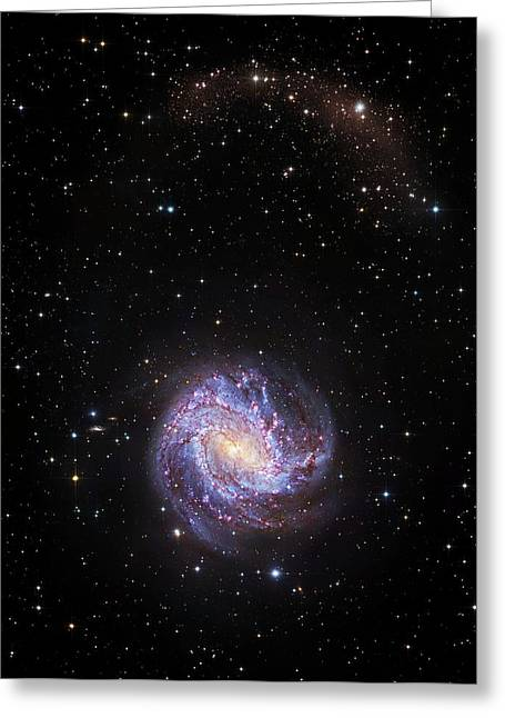 Southern Pinwheel Galaxy Greeting Card by Robert Gendler