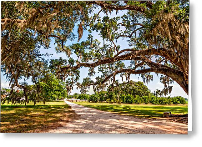 Nola Photographs Greeting Cards - Southern Serenity Greeting Card by Steve Harrington