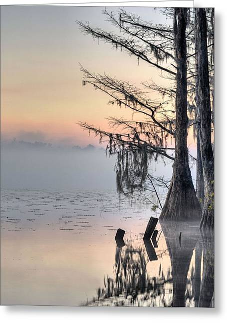 Ms Greeting Cards - Southern Sunrise  Greeting Card by JC Findley