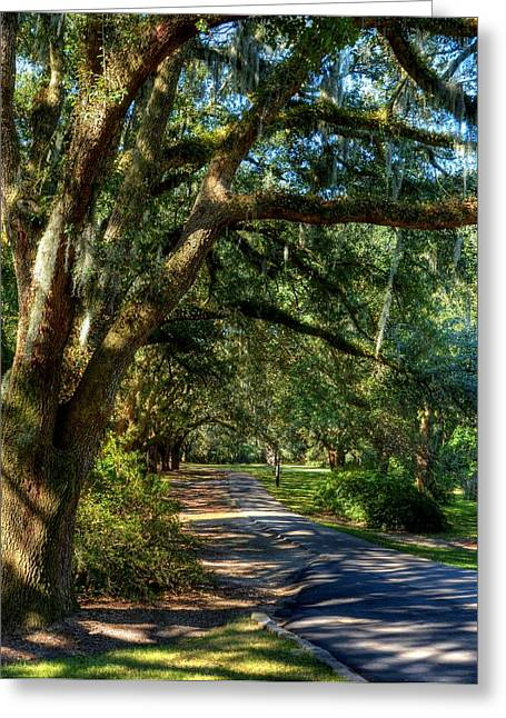 Charleston Pathway Greeting Cards - Southern Sunshine Greeting Card by Mel Steinhauer