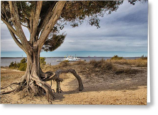 Civil War Site Digital Greeting Cards - Southport Ferry Greeting Card by Phil Mancuso