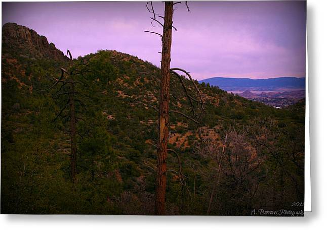 Prescott Greeting Cards - Southwest View of Thumb Butte Greeting Card by Aaron Burrows
