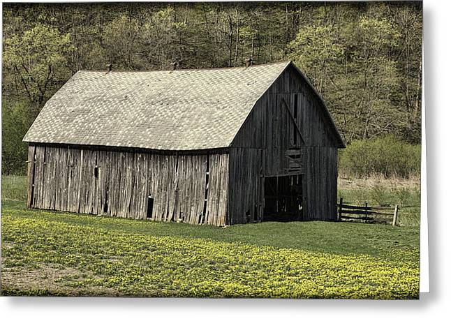 Wisconsin Barn Greeting Cards - Southwest Wisconsin Barn Greeting Card by Thomas Young