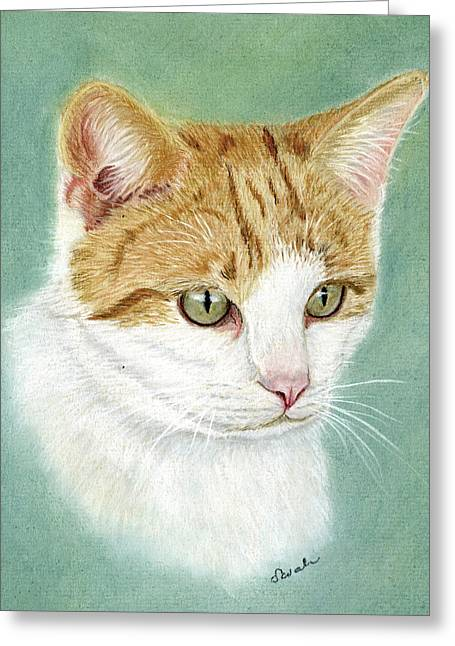 Cat Prints Pastels Greeting Cards - Sox Greeting Card by Sarah Dowson