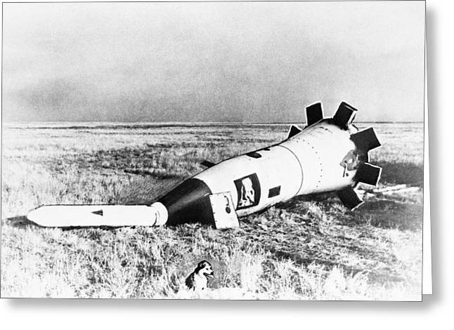 Sub-orbital Flight Greeting Cards - Space capsule after landing with dog Greeting Card by Science Photo Library