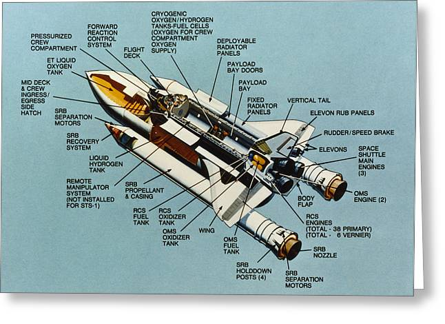 1981 Photographs Greeting Cards - Space: Space Shuttle, 1981 Greeting Card by Granger