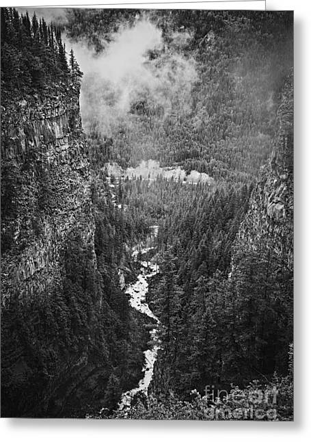 Canadian Greeting Cards - Spahats Creek canyon in Wells Gray Provincial Park Greeting Card by Elena Elisseeva