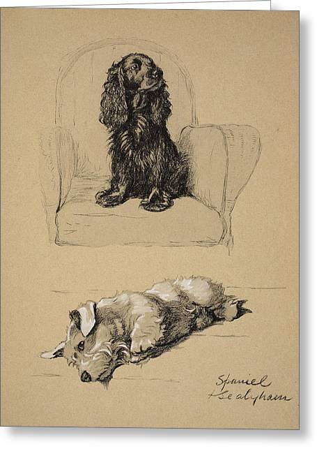 White Dogs Greeting Cards - Spaniel And Sealyham, 1930 Greeting Card by Cecil Charles Windsor Aldin