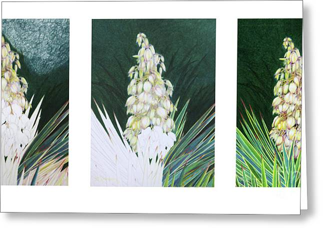 Bayonet Paintings Greeting Cards - Spanish Bayonet Evolving Greeting Card by Mariarosa Rockefeller