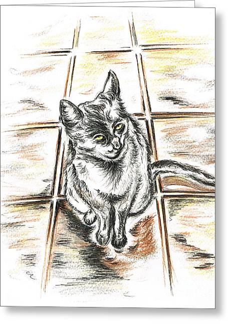 Quite Mixed Media Greeting Cards - Spanish cat waiting Greeting Card by Teresa White