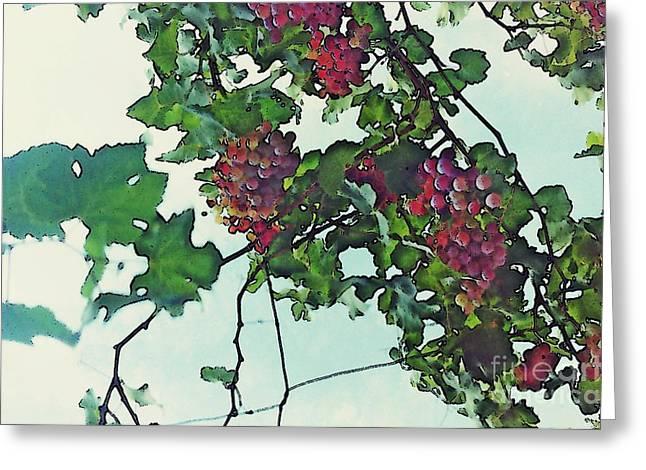 Vine Leaves Greeting Cards - Spanish Grapes Greeting Card by Sarah Loft