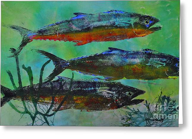 Spanish Mackerel Greeting Card by Brenda Alcorn