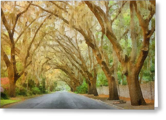 Moss Greeting Cards - Spanish Moss - Symbol of the South Greeting Card by Christine Till