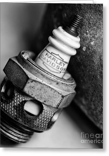 Electric Current Greeting Cards - Spark Plug  1 Greeting Card by Wilma  Birdwell