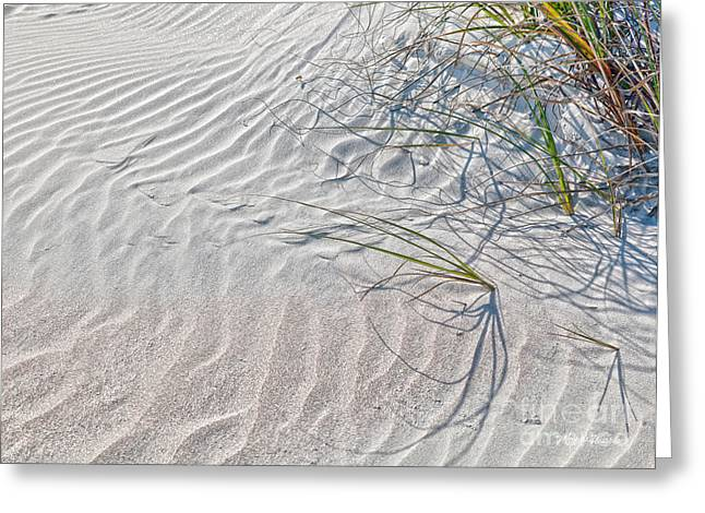Sparkling Beach Greeting Cards - Sparkling Sand Dunes Greeting Card by Michelle Wiarda