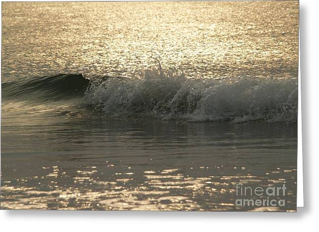 Sparkly Greeting Cards - Sparkling Sea in Hunting Island Dawn Greeting Card by Anna Lisa Yoder