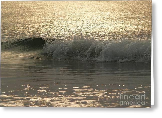 Sparkling Sea In Hunting Island Dawn Greeting Card by Anna Lisa Yoder