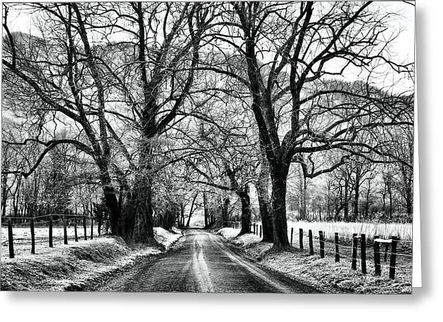 Gatlinburg Tennessee Greeting Cards - Sparks Lane During Winter Greeting Card by Carol R Montoya
