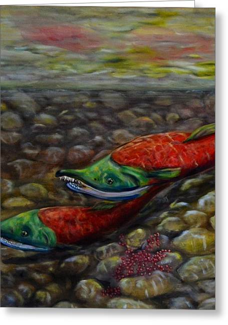 Sockeye Paintings Greeting Cards - Spawning Greeting Card by Jennifer Kwon