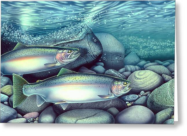 Rapid Paintings Greeting Cards - Spawning Steelhead Trout Greeting Card by Jon Q Wright