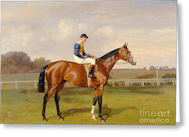 Jockeys Greeting Cards - Spearmint Winner of the 1906 Derby Greeting Card by Emil Adam