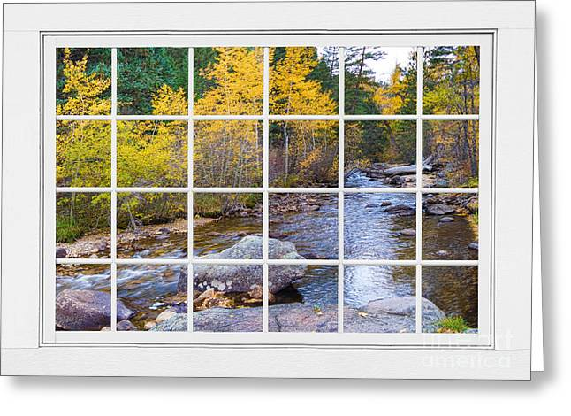 Fall Trees With Stream. Greeting Cards - Special Place in the Woods Large White Picture Window View Greeting Card by James BO  Insogna