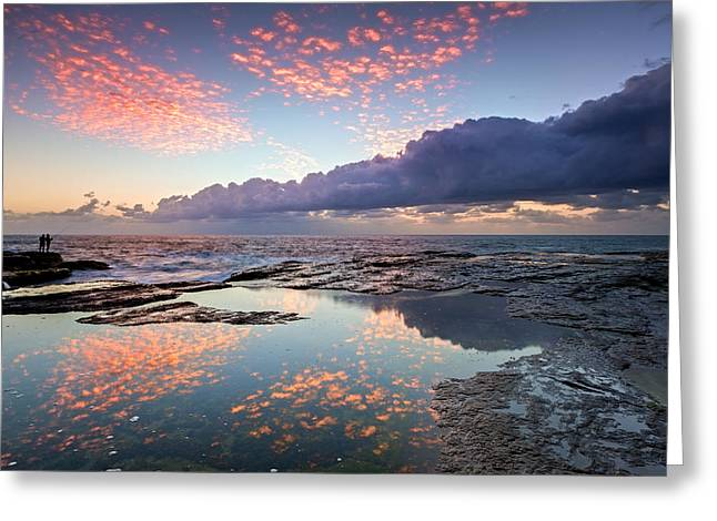 Donny Greeting Cards - Speckled Dawn Greeting Card by Mark Lucey
