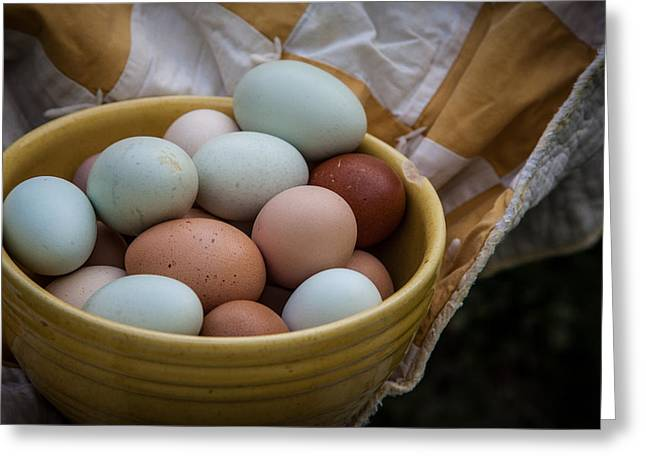 Rural Images Greeting Cards - Speckled eggs Greeting Card by Toni Hopper