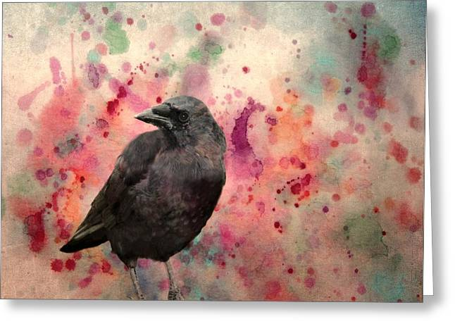 Crow Image Greeting Cards - Color Splash Crow Greeting Card by Gothicolors Donna Snyder
